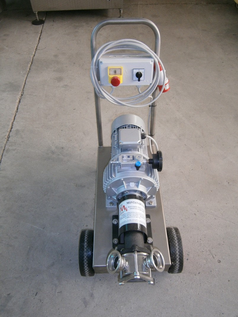 PUMPS - ELECTRIC-PUMPS MODEL G-90 WITH MOTOVARIATORE AND RUBBER IMPELLER FOR WINE