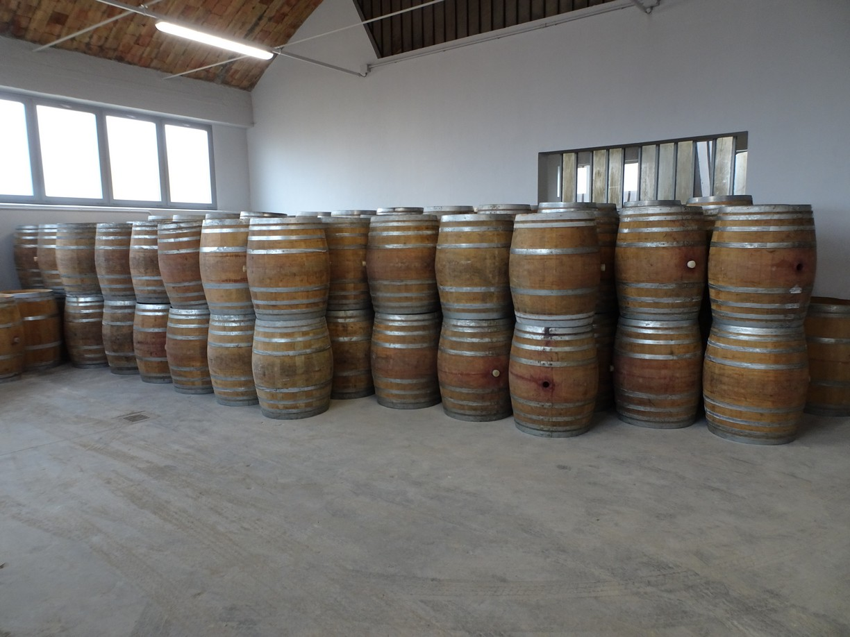 BARRELS IN OAK WOOD CAPACITY LITERS 225 OF THIRD-USE USED FOR RED WINE SECOND-HAND EQUIPMENT